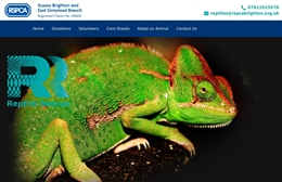 RSPC Reptile Rescue - website design by Toolkit Websites, professional web designers